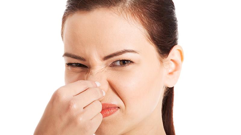 Trucos para eliminar los malos olores de la casa flota - Malos olores en casa ...