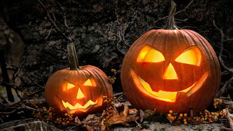 C mo vaciar y decorar una calabaza de halloween flota - Decorar una calabaza de halloween ...