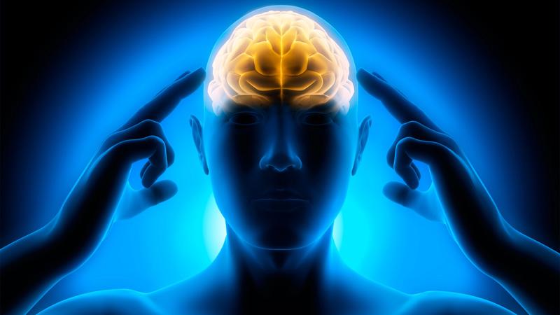 Juegos de inteligencia para ejercitar tu mente