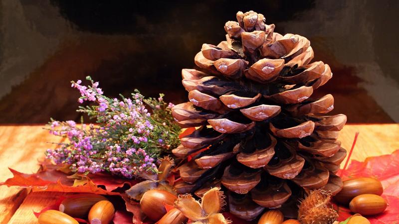 Decoración con elementos de la naturaleza en Navidad