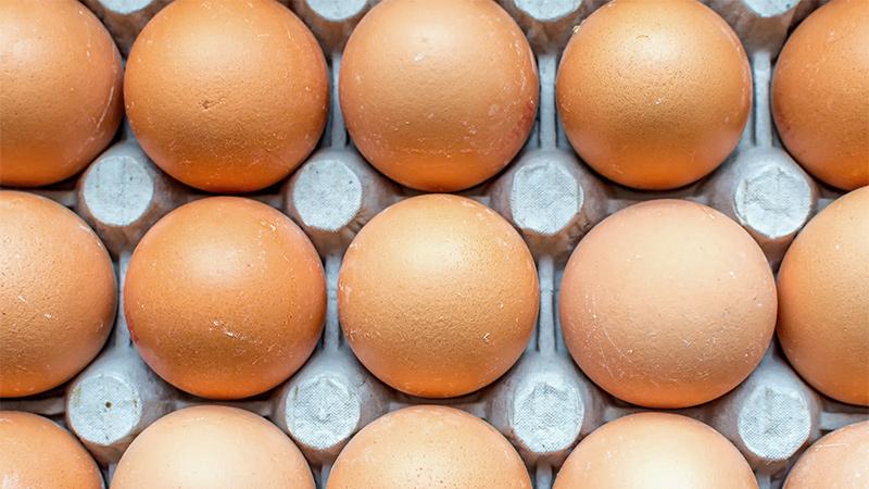 Cómo saber si un huevo está fresco