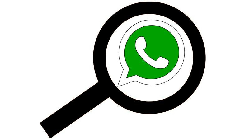 Cómo realizar búsquedas por palabras en WhatsApp