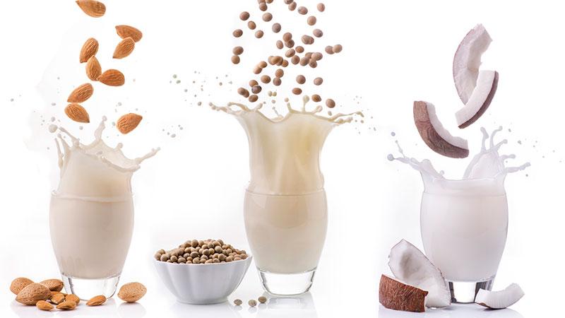 Tipos de leche vegetal y sus propiedades