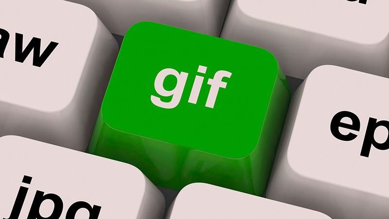 whatsapp-gif