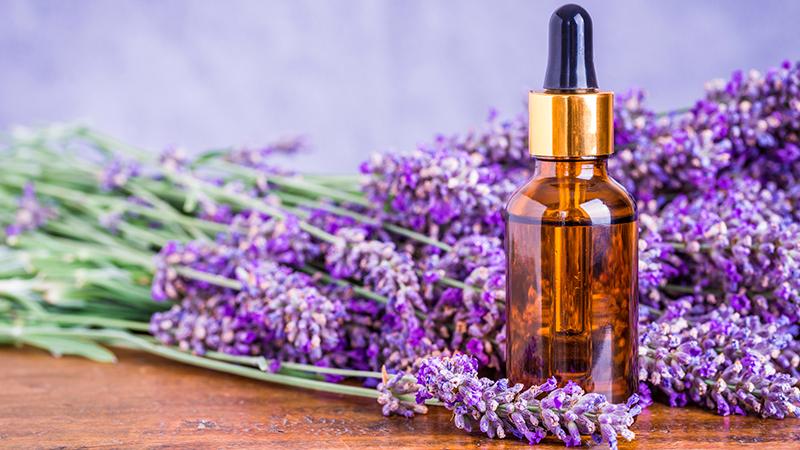 Propiedades y usos de la lavanda como planta medicinal for Planta decorativa con propiedades medicinales