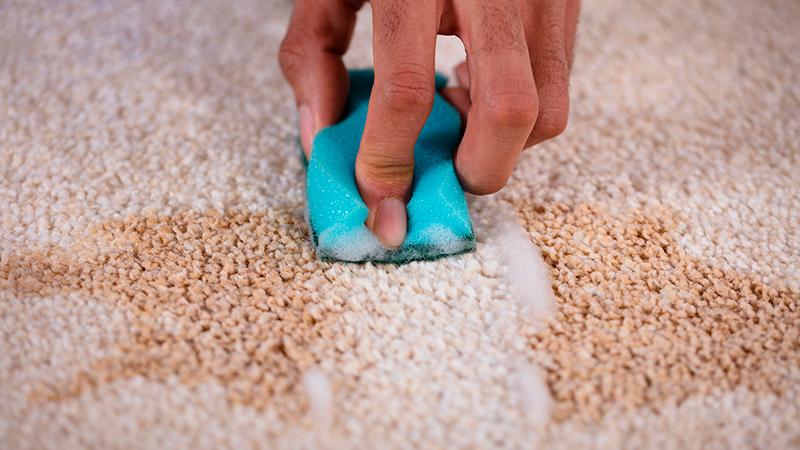 Cómo eliminar las manchas en la alfombra más frecuentes